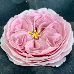 Voorbeeld van a Very English Rose
