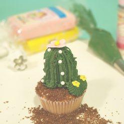 Kinderworkshop Cactus