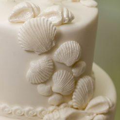 Katy Sue Sea Shells Mould