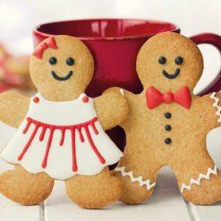 FunCakes mix voor Gingerbread